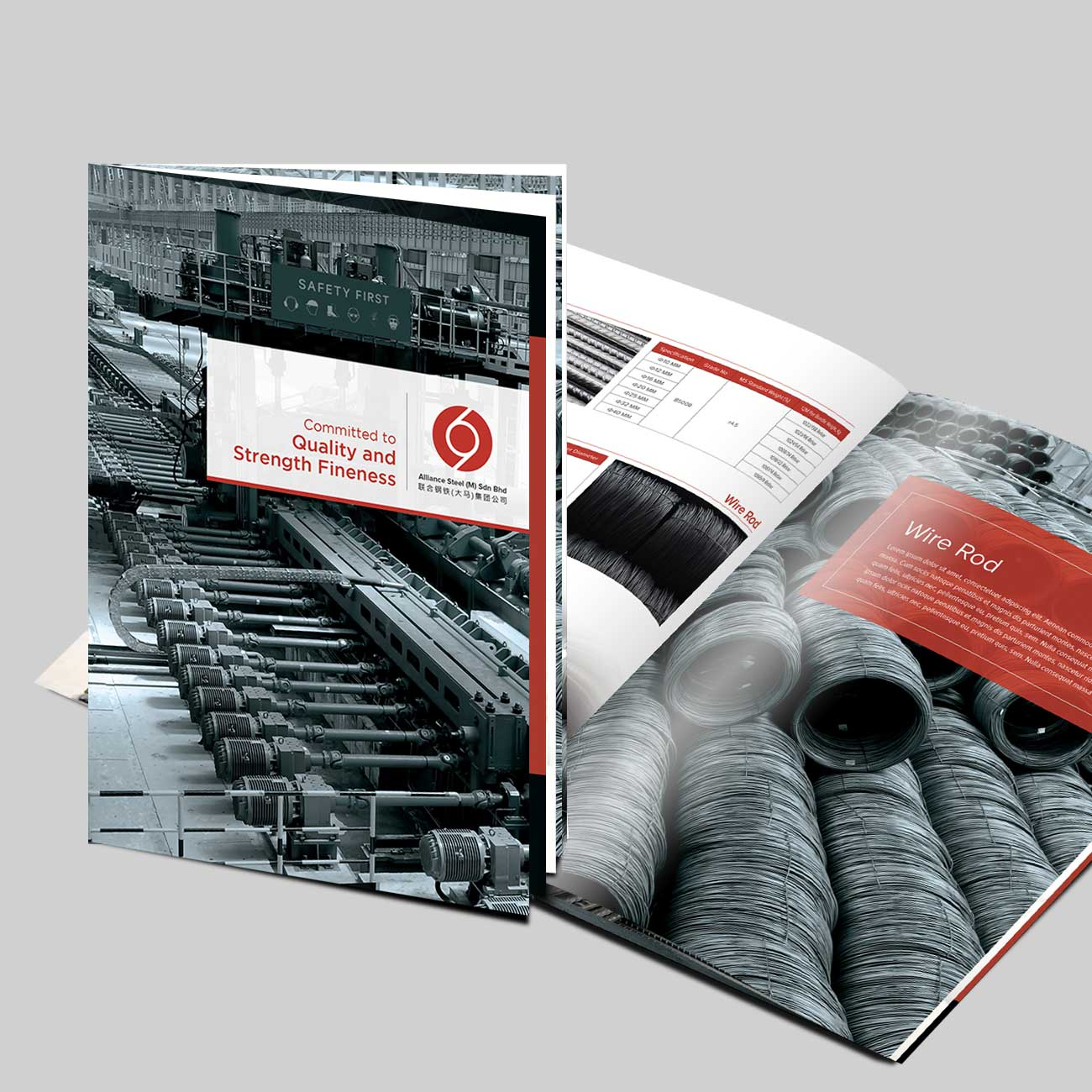 Alliance Steel (M) Company Profile in Booklet type